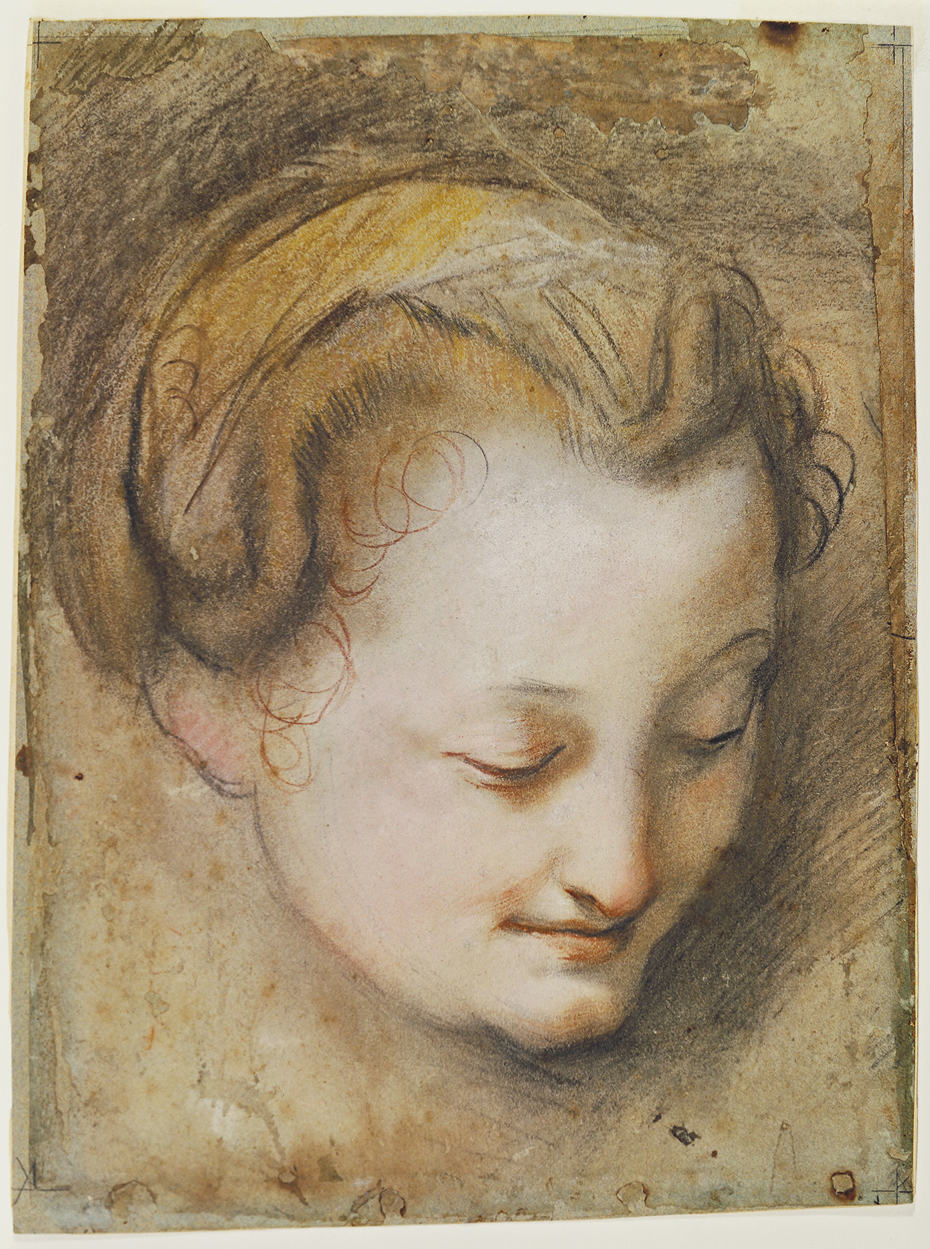 Barocci, Head of a Woman