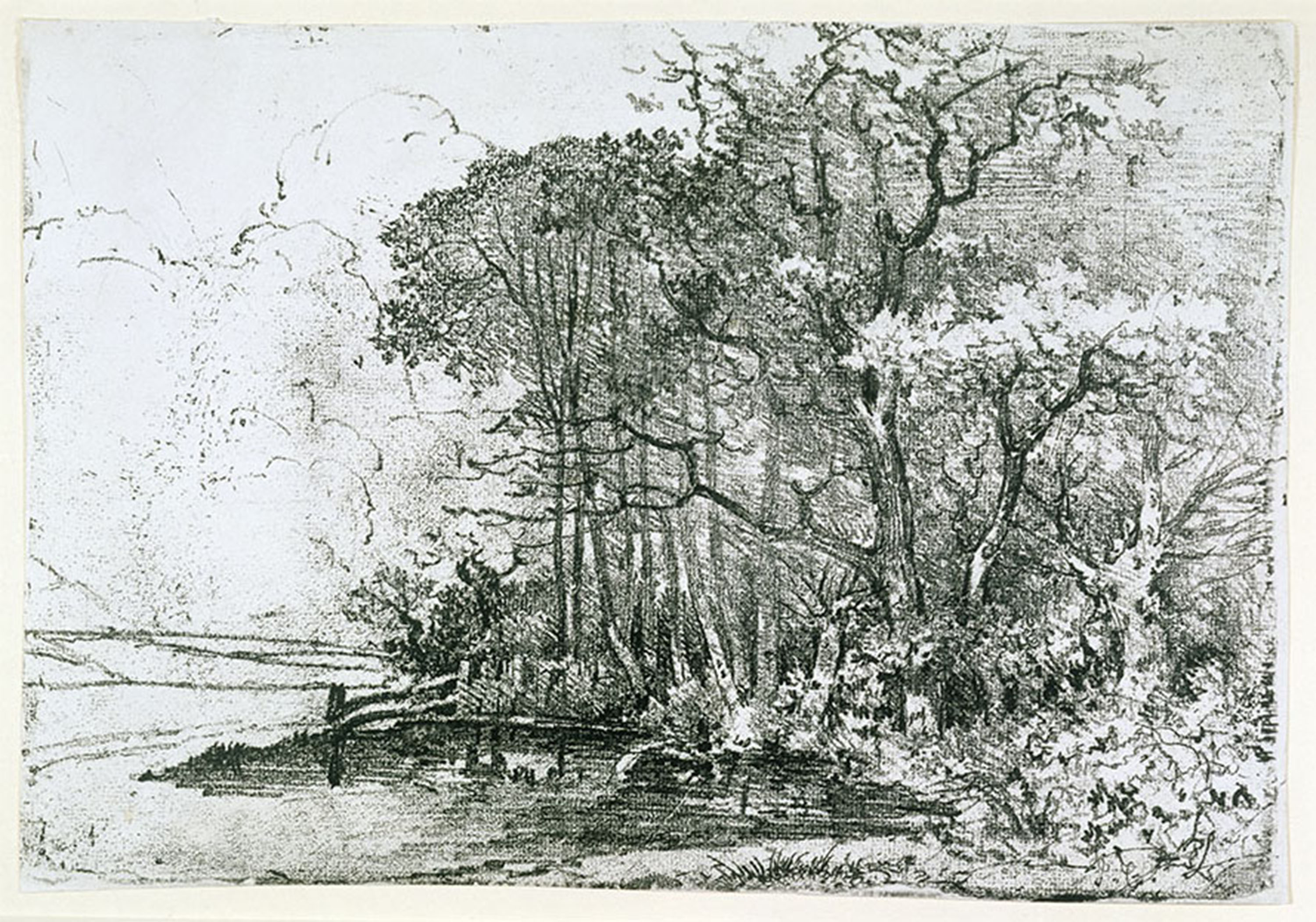Black and white etching of a wooded scene on right foreground with a cloudy sky in the background